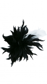 ACCESSORIES - BLACK WHITE FEATHER BROOCH